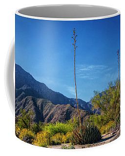 Coffee Mug featuring the photograph Desert Flowers In The Anza-borrego Desert State Park by Randall Nyhof