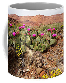 Desert Cactus In Bloom Coffee Mug