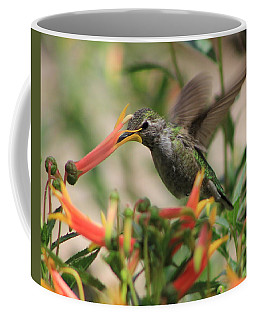 Desert Humming Coffee Mug by Kathy Bassett