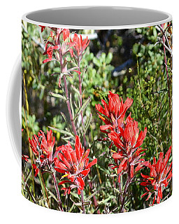 Desert Indian Paintbrush - Joshua Tree National Park Coffee Mug by Glenn McCarthy Art and Photography