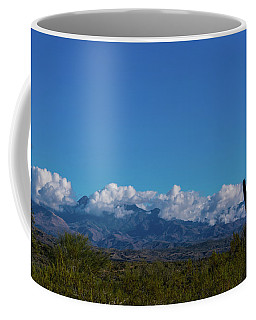 Desert Inversion Cactus Coffee Mug