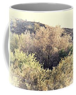 Desert Ironwood Afternoon Coffee Mug