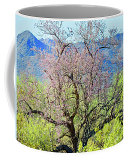 Desert Ironwood Beauty Coffee Mug