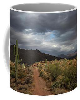 Desert Light And Beauty Coffee Mug