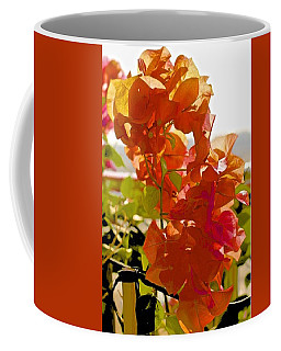 Desert Orange Coffee Mug