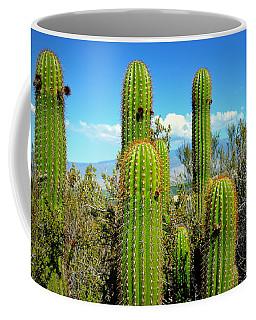 Desert Plants - All In The Family Coffee Mug