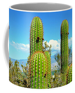 Desert Plants - All In The Family Coffee Mug by Glenn McCarthy