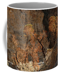 Desert Plants Coffee Mug by Inge Riis McDonald