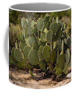 Coffee Mug featuring the photograph Desert Prickly-pear No6 by Mark Myhaver