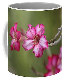 Desert Rose 5964-041118-1 Coffee Mug