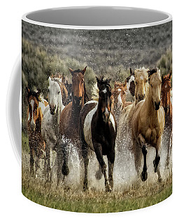 Coffee Mug featuring the photograph Desert Showers by Joan Davis