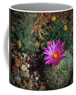 Desert Splash Coffee Mug by Elaine Malott