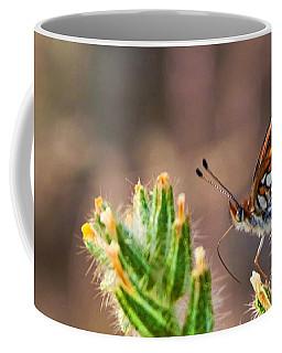 Desert Spring Life Coffee Mug