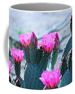 Desert Spring Coffee Mug