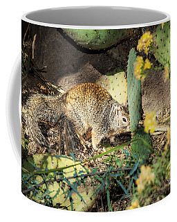 Coffee Mug featuring the photograph Desert Squirrel by Lawrence Burry