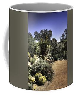 Coffee Mug featuring the photograph Desert Walkway by Lynn Geoffroy