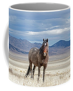 Desert Wild Horse Coffee Mug