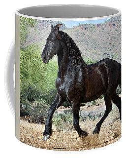 Desert Wind Coffee Mug