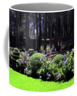 Desierto De Los Leones 1 Coffee Mug