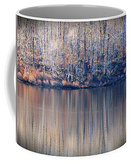 Desolate Splendor Coffee Mug