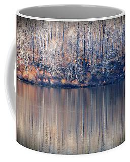 Desolate Splendor Coffee Mug by David Dehner