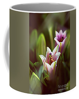 Detail Of Pink And White Oriental Lilies In Sunlight. Coffee Mug