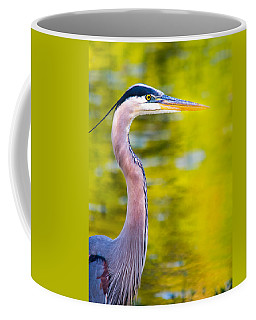 Coffee Mug featuring the photograph Details Of A Great Blue Heron  by Parker Cunningham