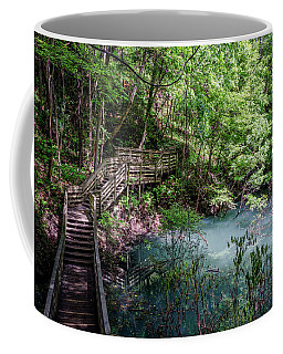 Devil's Millhopper Gainesville Fl II Coffee Mug