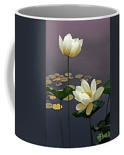 Coffee Mug featuring the photograph Devotion by Jessica Jenney