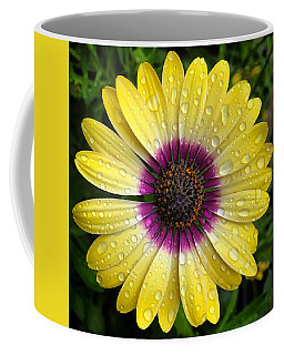 Dew Dropped Daisy Coffee Mug