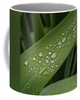 Coffee Mug featuring the photograph Dew Drops On Leaf by Jean Noren