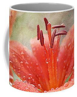 Dew Drops Shining In The Sun Coffee Mug