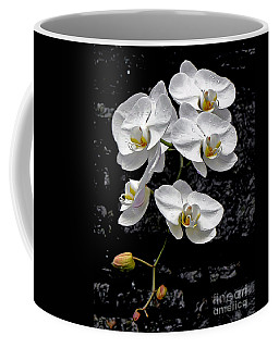Coffee Mug featuring the photograph Dew-kissed Cascading Orchids by Sue Melvin