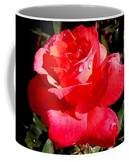 Dewly Noted Coffee Mug