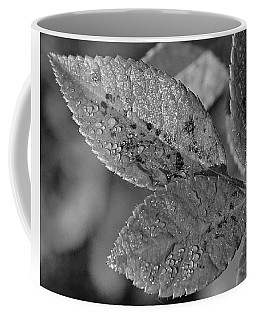 Dewy Leaves Coffee Mug