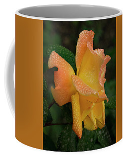 Coffee Mug featuring the photograph Dewy Rose by Jean Noren