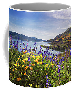 Diamond Valley Coffee Mug