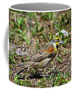 Dickcissel Coffee Mug