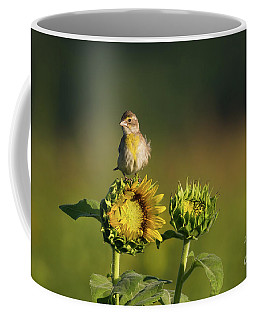 Dickcissel Sunflower Coffee Mug