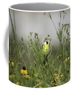 Coffee Mug featuring the photograph Dickcissel With Mexican Hat by Robert Frederick