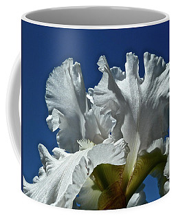 Did Not Evolve Coffee Mug