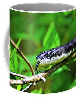 Did Ya Miss Me Coffee Mug