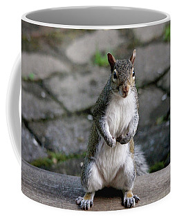 Coffee Mug featuring the photograph Did You Say Peanuts? by Trina Ansel