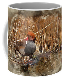Digital Watercolour Painting Of Beautiful Portrait Of Red Crested Pochard In The Wild Coffee Mug