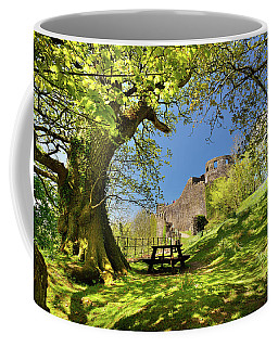 Dinefwr Castle Coffee Mug