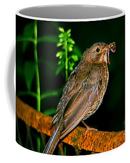 Coffee Mug featuring the photograph Dinner Time  by Mariola Bitner