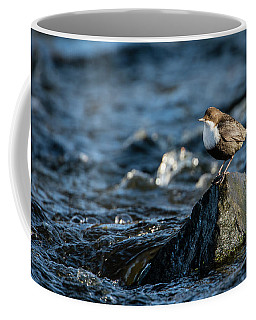 Dipper On The Rock Coffee Mug
