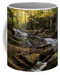 Discovery Falls Autumn Coffee Mug