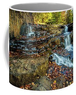 Dismal Creek Falls Horizontal Coffee Mug