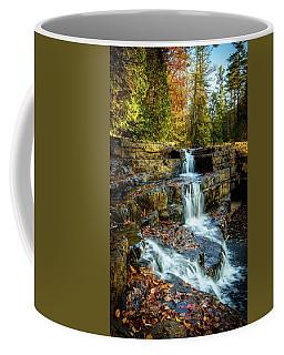 Dismal Falls #3 Coffee Mug